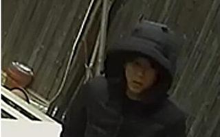 亚裔入室盗窃、非裔抢劫 109分局通缉