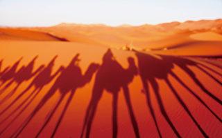 惊艳北非 漫游奇幻撒哈拉