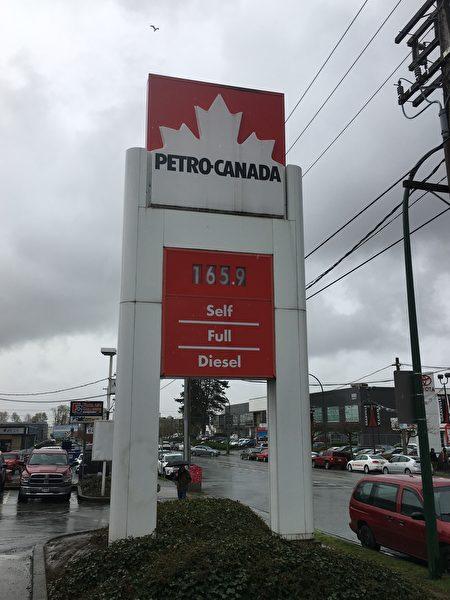 溫哥華的油價在$1.649的北美最高紀錄徘徊了幾天後,4月11日又站在了一個新的高度,達到了$1.659/升。圖為Petro-Canada加油站的油價。(童宇/大紀元)