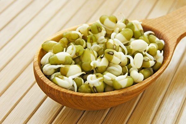 綠豆芽。(Fotolia)
