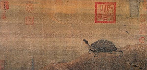 图为金 张珪 《神龟图》卷,北京故宫博物院藏。(公有领域)