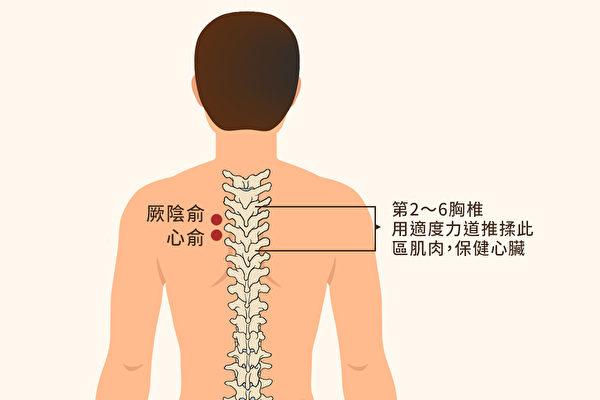 有心臟不適的問題時,可以用適度的力道來推揉2~6胸椎區域的肌肉,保健心臟。(大紀元製圖)