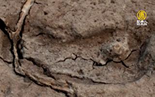 智利15,600年男脚印 确认美洲最古老