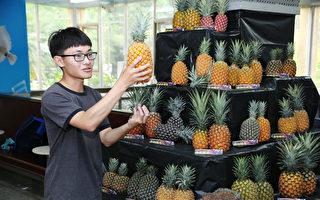 嘉大園藝週 藉展場一角為農民促銷鳳梨