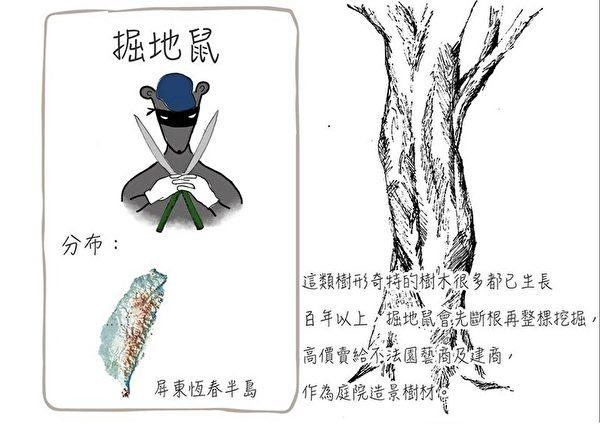 林務局公布山老鼠犯罪型態