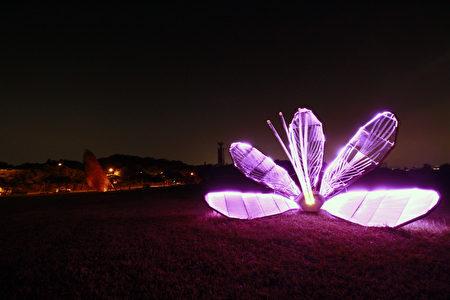 LED燈條勾勒出的清華紫荊花。