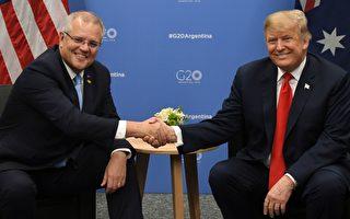 澳洲总理莫里森跟美国总统川普有多像?