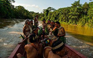2019年4月14日,瓦拉尼土著居民在庫拉賴河上泛舟。(RODRIGO BUENDIA/AFP/Getty Images)