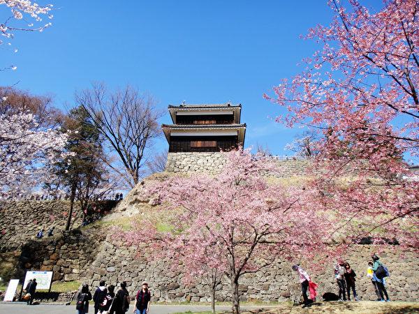 掩映在花丛中的日本长野上田城城堡。(蓝海/大纪元)