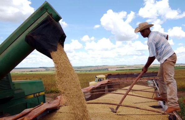 美国农业部长表示,新一轮农业援助计划将为农民提供更多援助。(Scott Olson/Getty Images)