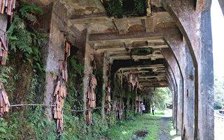 【平溪鐵道之旅】鐵道支線那些老故事