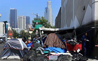 报告:洛市政厅老鼠是游民垃圾招来