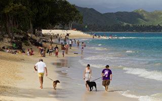 调查:四分之一的美国人今夏不度假