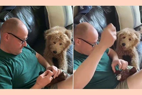 """海莉说,""""我爸爸很爱他的小狗。视频里,我爸爸和Leo一起把它最心爱的玩具缝好这一幕,是我今生中见过最纯真的画面。""""(Courtesy of Hayley Alaxanian/大纪元合成)"""