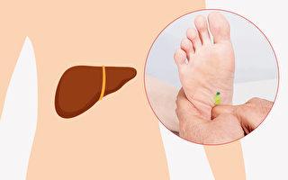 通过脚底按摩可以改善肝功能。(Shutterstock/大纪元制图)
