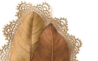 她用針線和枯葉驚艷了世界