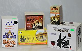 抗癌最佳產品——巴西蘑菇姬松茸