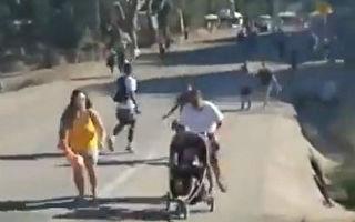 加州大蒜节惊传枪击案 至少4死15伤