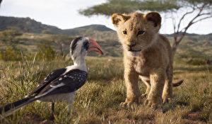 狮子王电影版