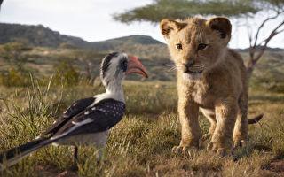 《獅子王》VR特效圈粉 彷彿從影廳跨進非洲