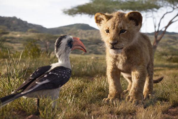 獅子王電影版