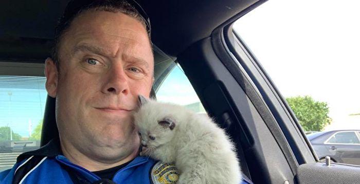 奶貓獲救立即「抱緊」警官 讓他有了新主意