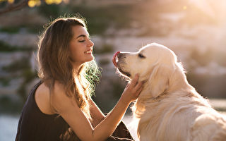 視頻:同樣耳聾 美國女子和小狗以手語溝通