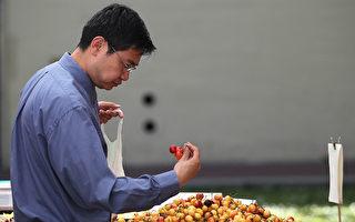 中国人吃樱桃 也得听中共政治导向?