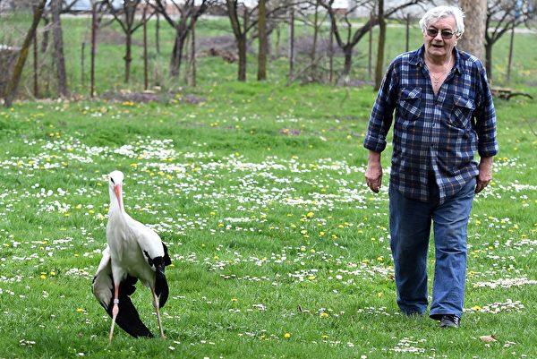 1993年,已退休的學校照護人員沃基奇 (Stjepan Vokić) ,在一處池塘邊發現了「馬萊娜」(Malena)。 攝於2018年4月9日。 (/AFP/Getty Images)