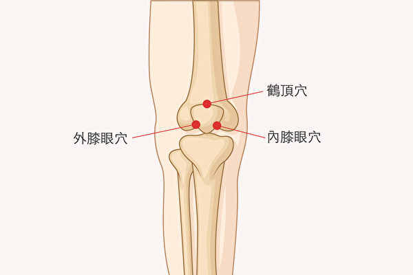 常按膝盖上的三个穴位:鹤顶穴、内膝眼穴、外膝眼穴,改善膝关节酸痛。(Shutterstock/大纪元制图)