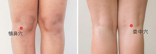 犢鼻穴和委中穴都有益於減輕膝關節發炎狀態。<br />  (Shutterstock)