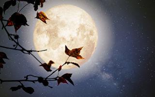 遥视月球 超能力者惊出冷汗