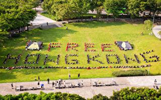 """""""挺人权 撑香港 护民主""""台19团体排字声援"""