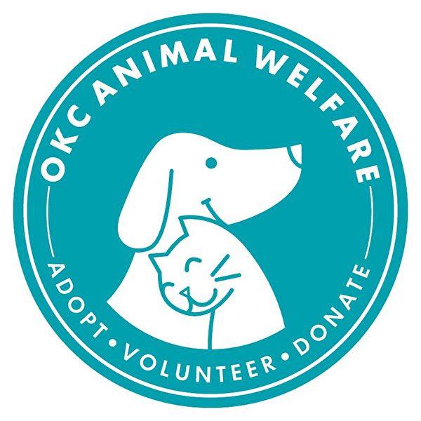 「奧克拉荷馬市動物之家」從「風暴51區」的荒謬發想中,找到了吸引潛在領養者的妙計,幫助許多收容所裡的小狗找到好人家。(Courtesy of OKC Animal Welfare)