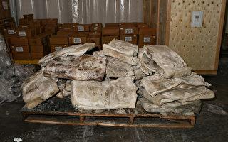澳進口墨西哥冷凍牛皮 內藏755公斤冰毒