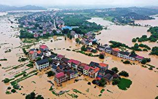 大陆遭遇洪涝干旱虫害灾情 粮食大获丰收?