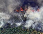 亚马逊森林大火持续燃烧 巴西派军队扑救
