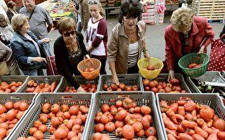 法國遭熱浪襲擊 蔬果價格飆升