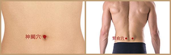 糖尿病艾灸穴位:神阙穴与肾俞穴为一组。(Shutterstock/大纪元制图)