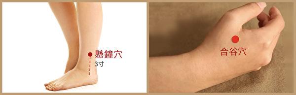 中风后遗症艾灸穴位:悬钟、合谷为一组,各灸十五分钟。(大纪元制图)
