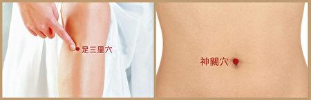 濕疹艾灸穴位:足三里、神闕。(大紀元製圖)