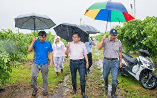 白鹿侵襲 台東農損初估逾千萬
