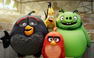 《憤怒鳥玩電影2:冰的啦!》影評:與他人分享光芒 也是種成功