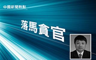 武汉市委前常委蔡杰被逮捕引关注
