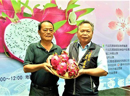 市府农业局14日举办红龙果评鉴活动,由酿酒葡萄转种红龙果的外埔乡饶黄节,拿下今年红龙果王宝座。