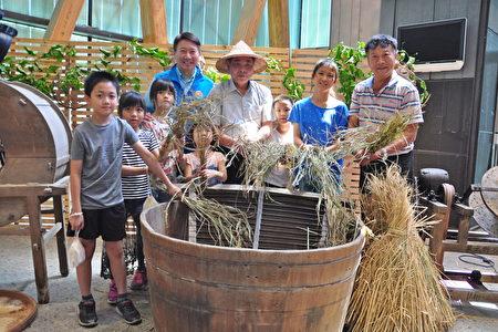 体验传统手工打稻谷的乐趣