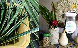 環保吸管2.0 菲咖啡店用「椰子葉」當吸管