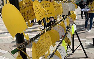 数百支持者温艺术馆组人链声援香港