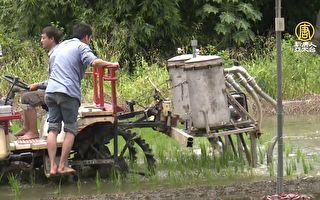 屏科大造「捕螺吸塵器 」造福農民不再叫苦