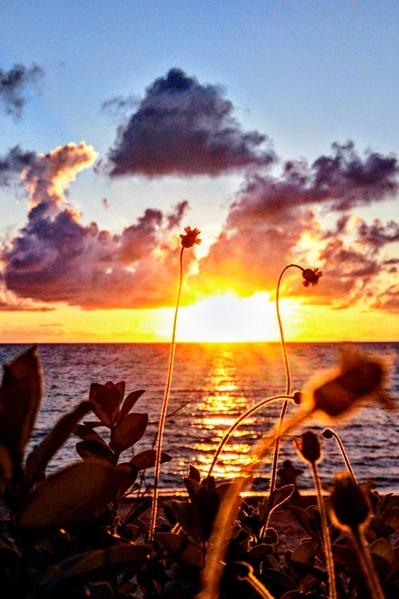 组图:台湾恒春后湾秘境 坐看落日夕阳美景